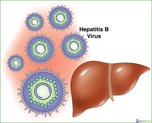 hepatitis treatment virus B